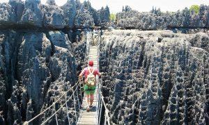 Circuito Tsingys y fauna Madagascar